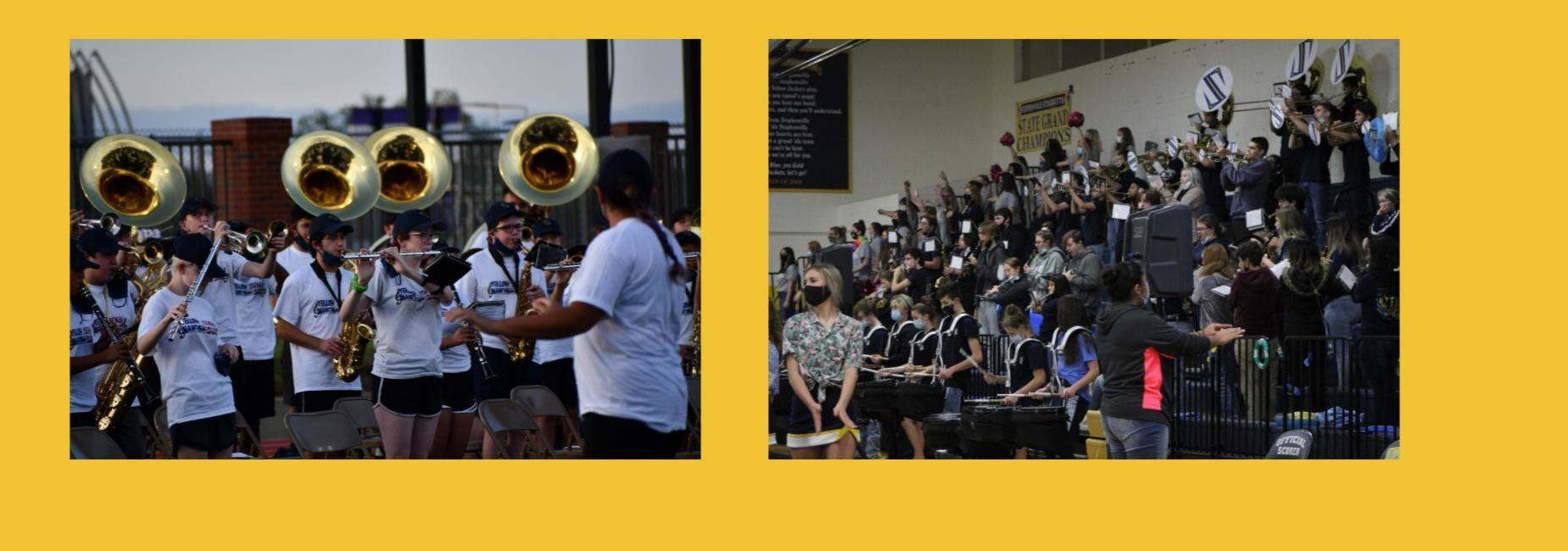 Yellowjacket band