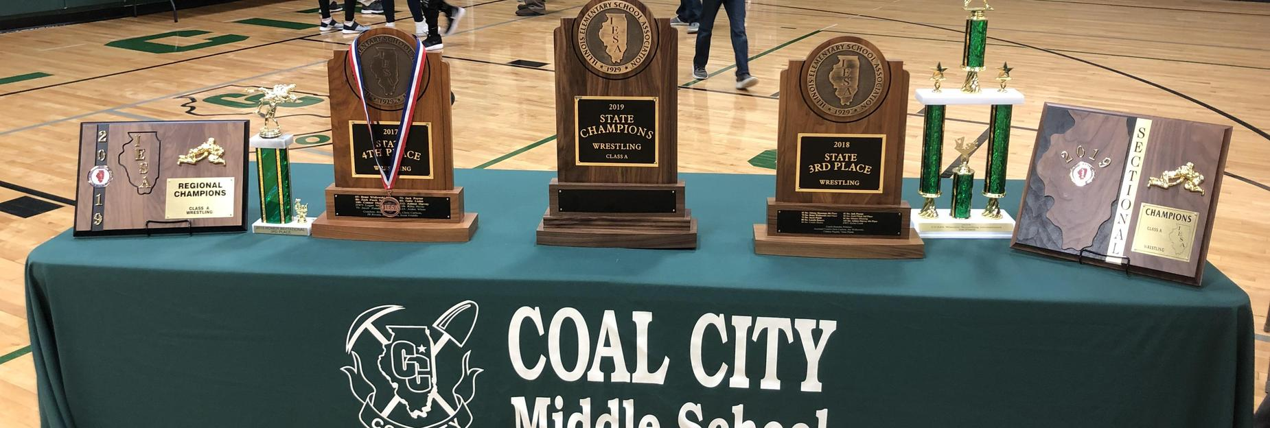 A great year for hardware at CCMS