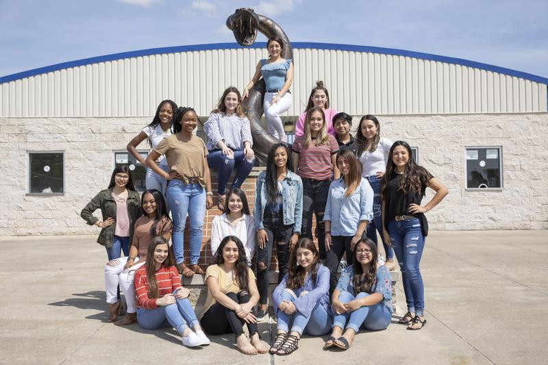 2019-2020 NHS Cheer Squad Featured Photo