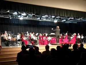 Congratulations to all of our River Hawk musicians last night for a wonderful instrumental concert! #Riolovesthearts