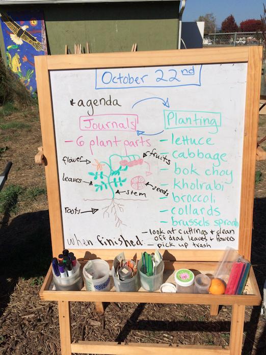 A sample garden agenda