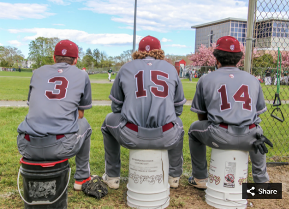 Stang baseball players watching field