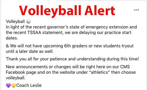 Volleyball Alert