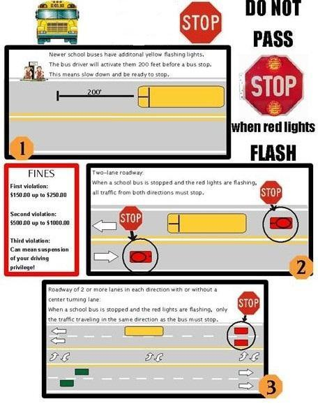 RED LIGHT LAWS