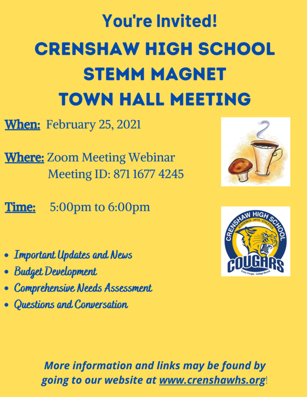Town Hall Flyer 2_25_21.png