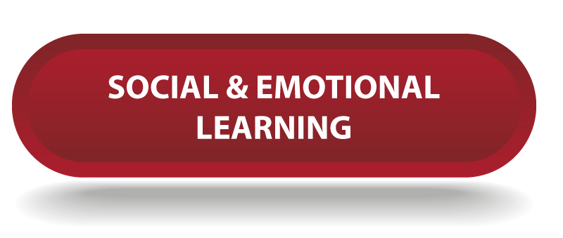 Social & Emotional Learning Plans for Students