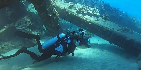Renee Capozzola, underwater photographer.