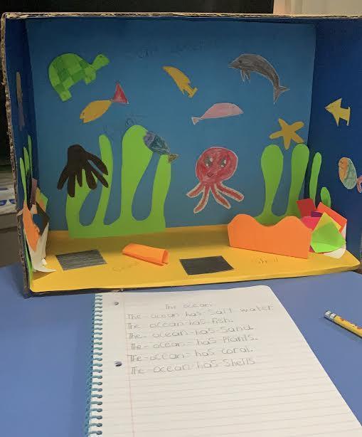 Ocean animals diorama