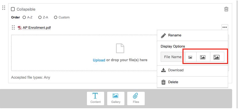 screenshot of pdf file display