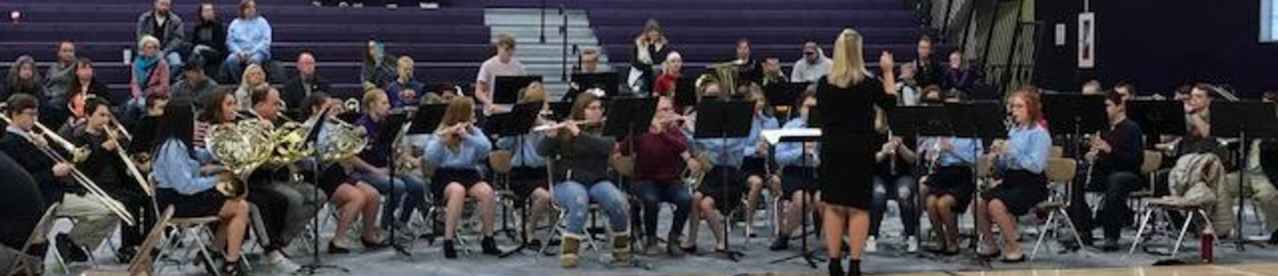 Veterans Day Band performance
