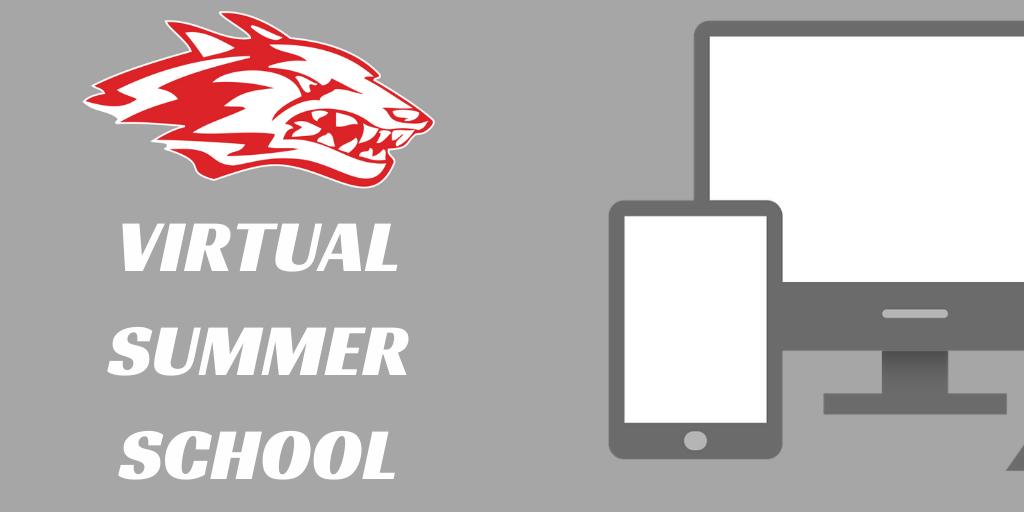 virtual summer school logo