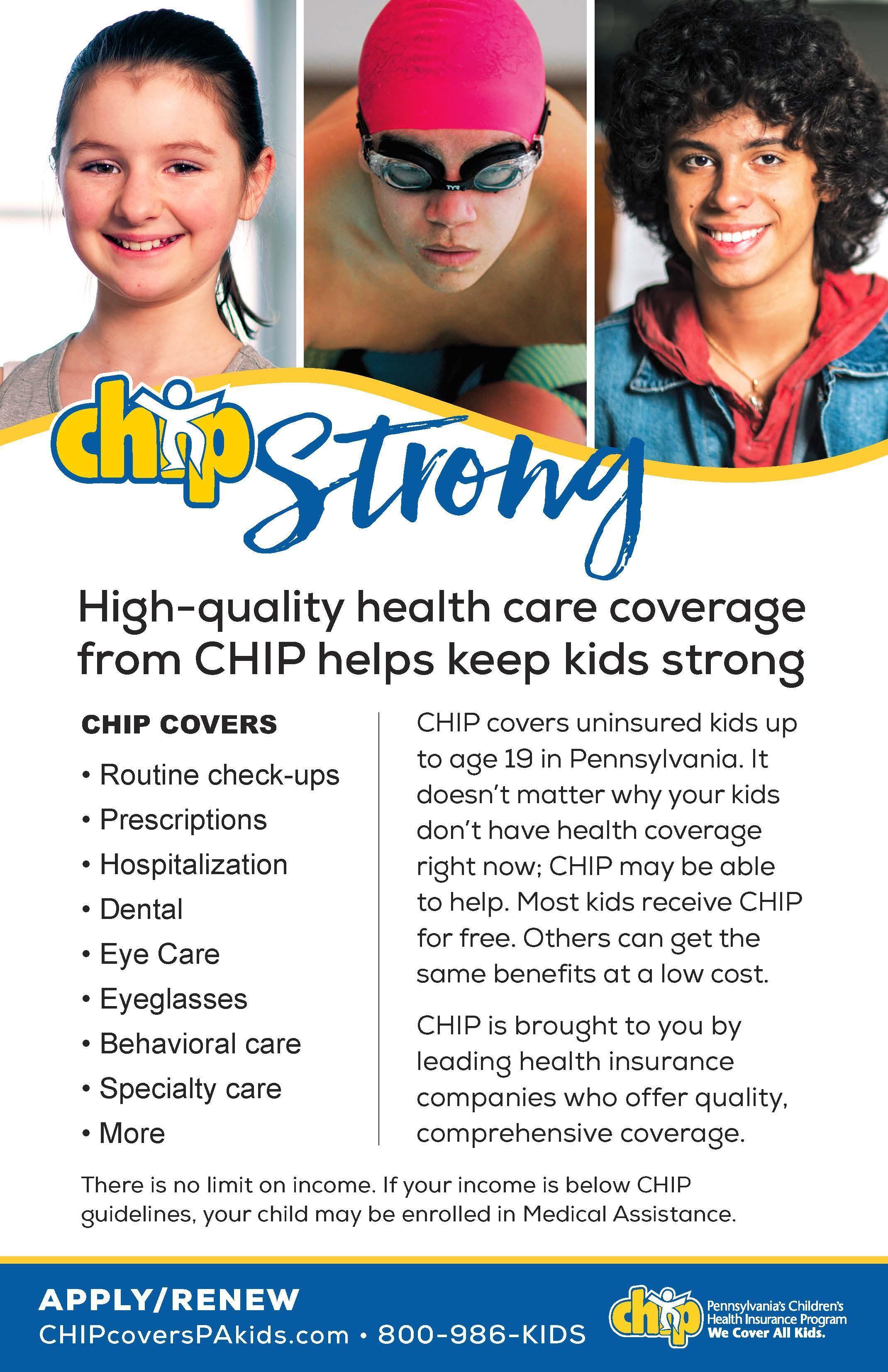 chip brochure