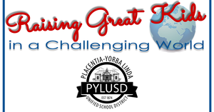 Graphic for PYLUSD.