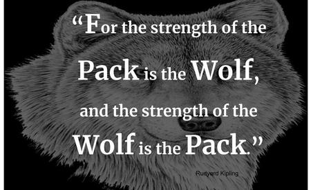 For the strength of the pack is the wolf and the strength of the wolf is the pack