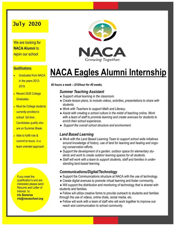 NACA Eagles Alumni Internship
