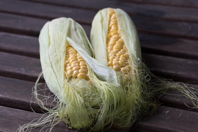 FFA corn