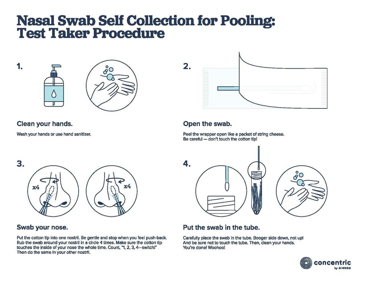 Nasal Swab Self-Collection Instructions for Pooling