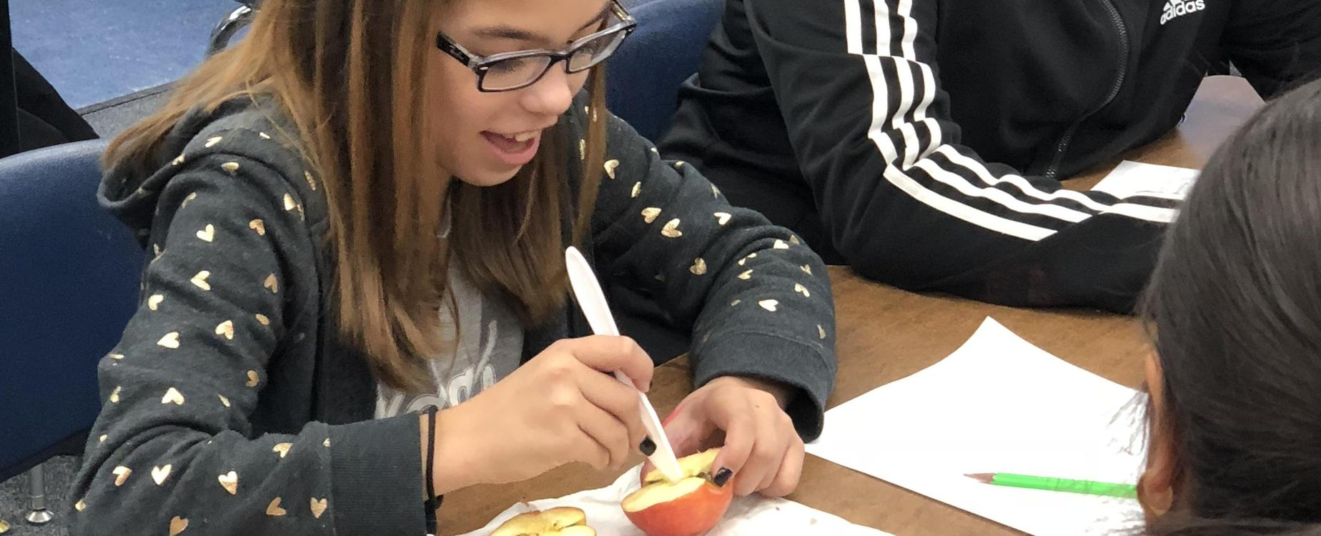 mummifying apples