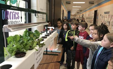 students checking on hydroponics garden
