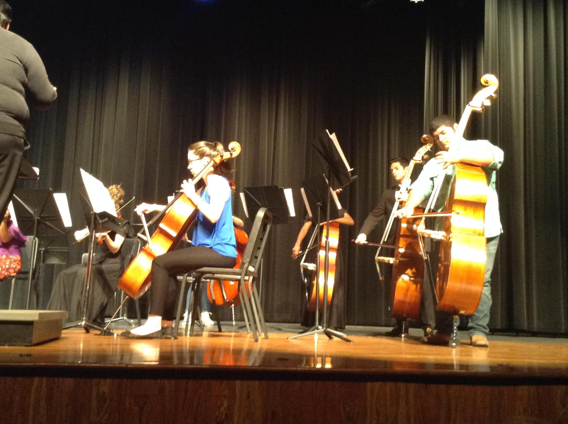 Portion of Orchestra Concert