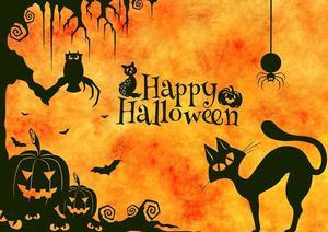 a black cat and pumpkins that say Happy Halloween