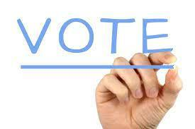 Hand writing vote in blue