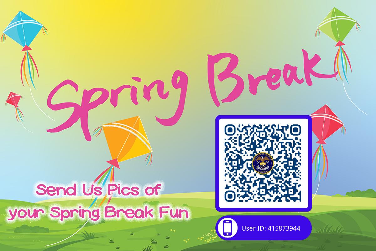 Spring Break Survey