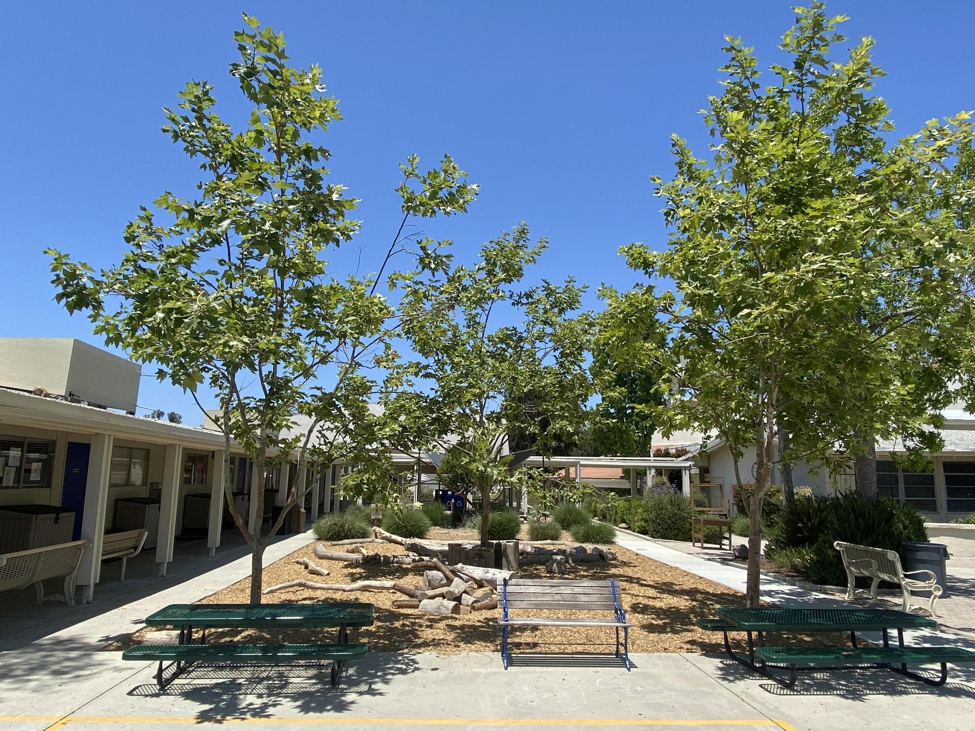 Certified Outdoor Classroom