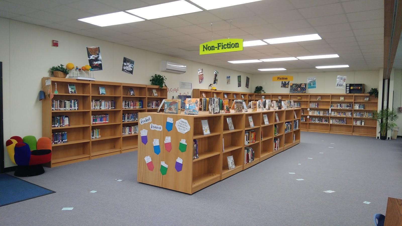 Intermediate Library Bookshelves