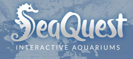 SeaQuest Flyer