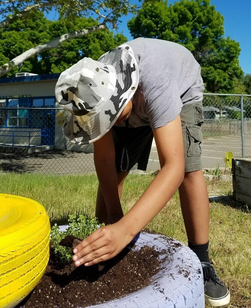 Student picks weeds in the garden