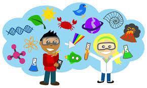 STEM Squires