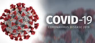 Picture of Coronavirus Cell
