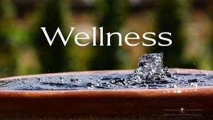 wellness picture