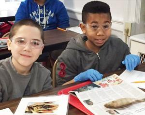 Van Cleve students at a science class disecting a fish