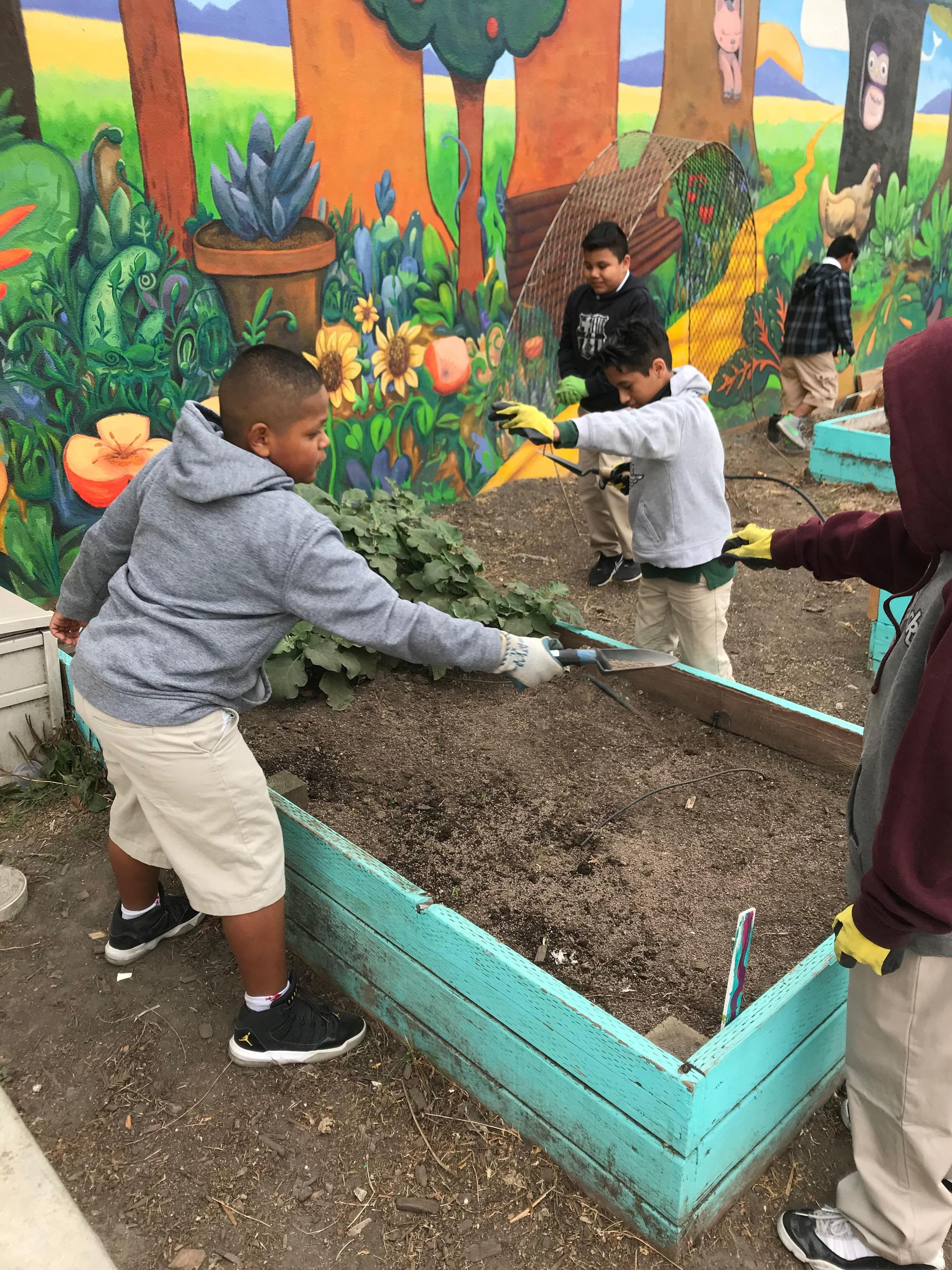 students spreading seeds in a planter box