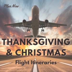 Poster for Flights
