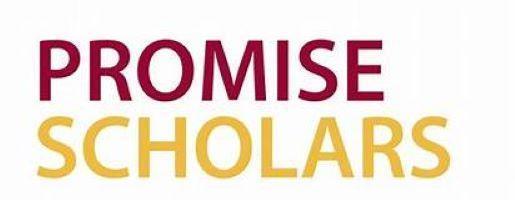 Promise Scholars Image