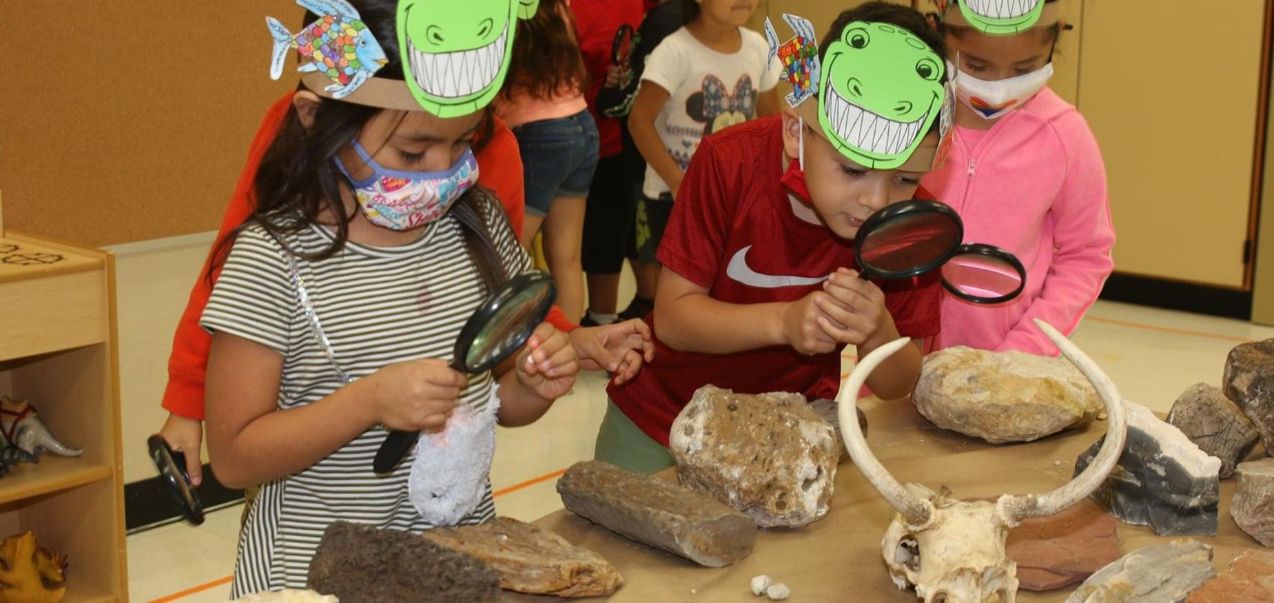 students examine fossils in summer school