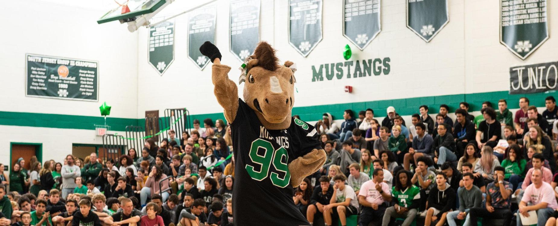 Mustang school spirit