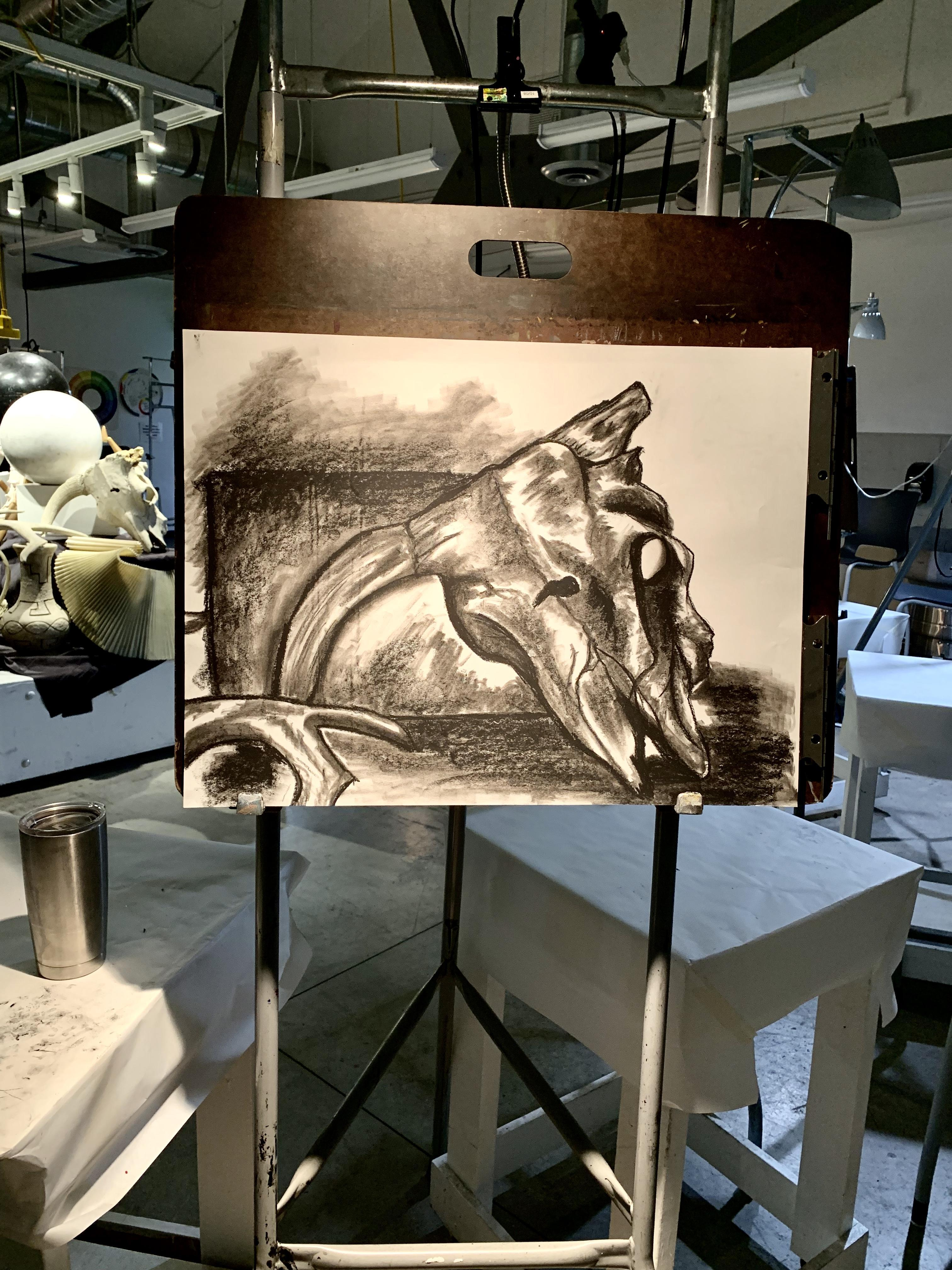 A Still Life Charcoal Drawing I Created