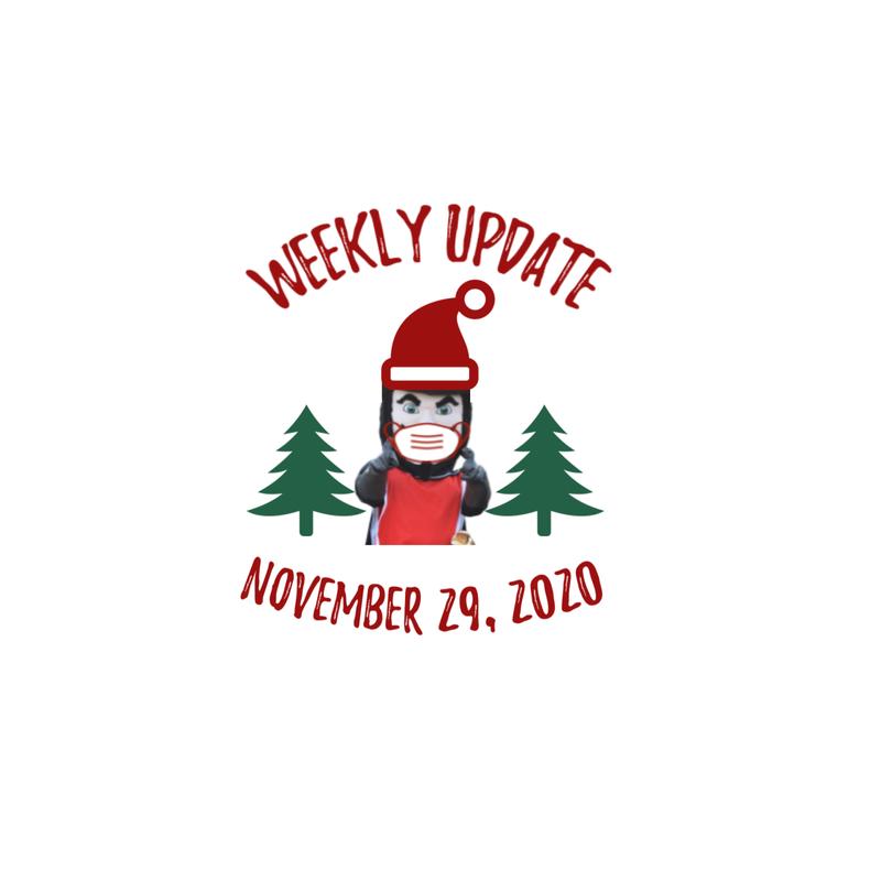 Weekly Update November 29, 2020