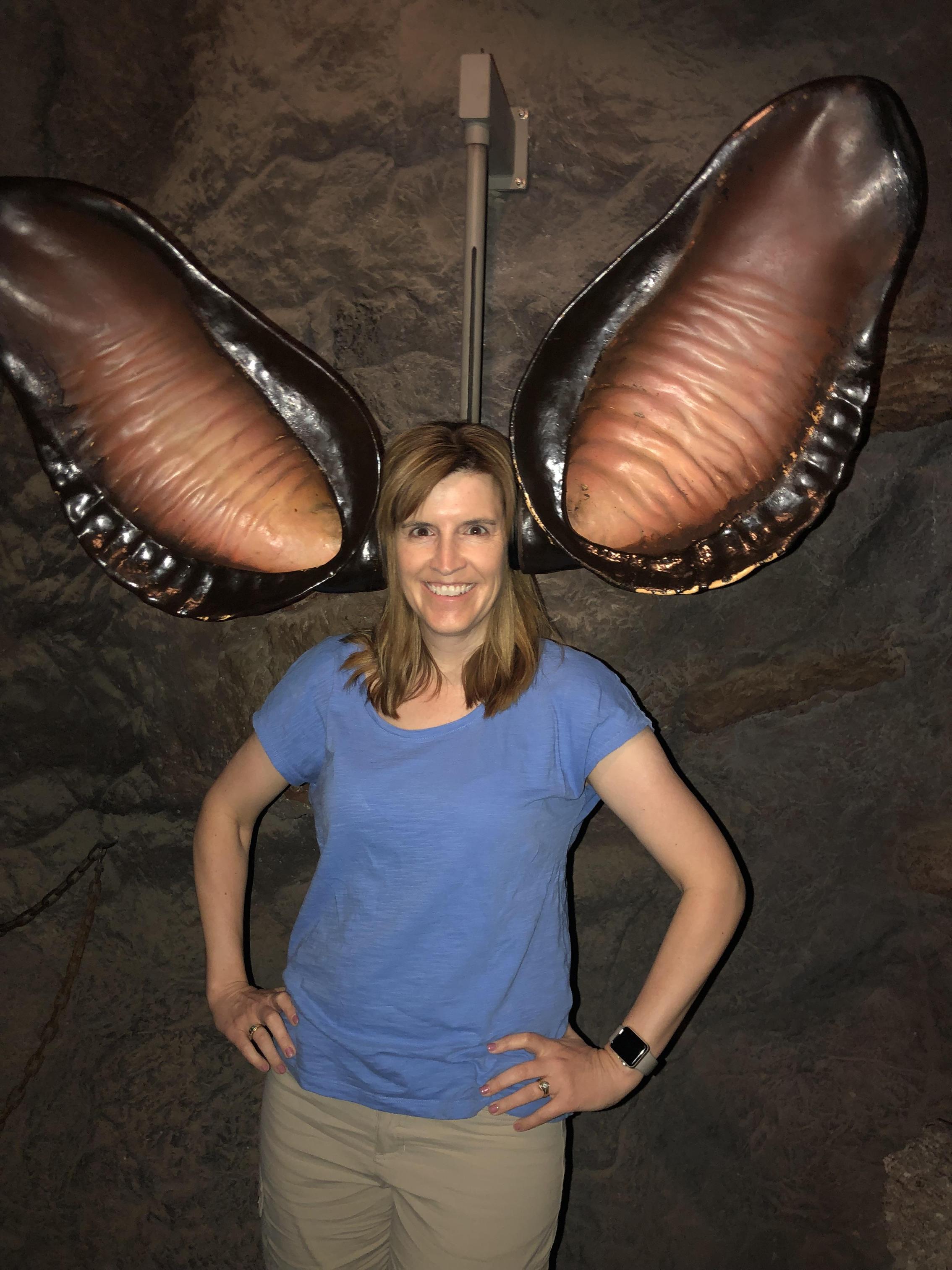 Visiting Tucson, AZ 2019