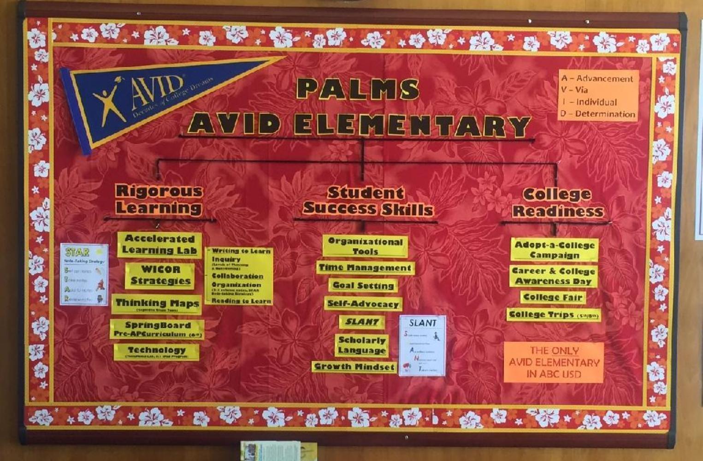 Palms AVID information