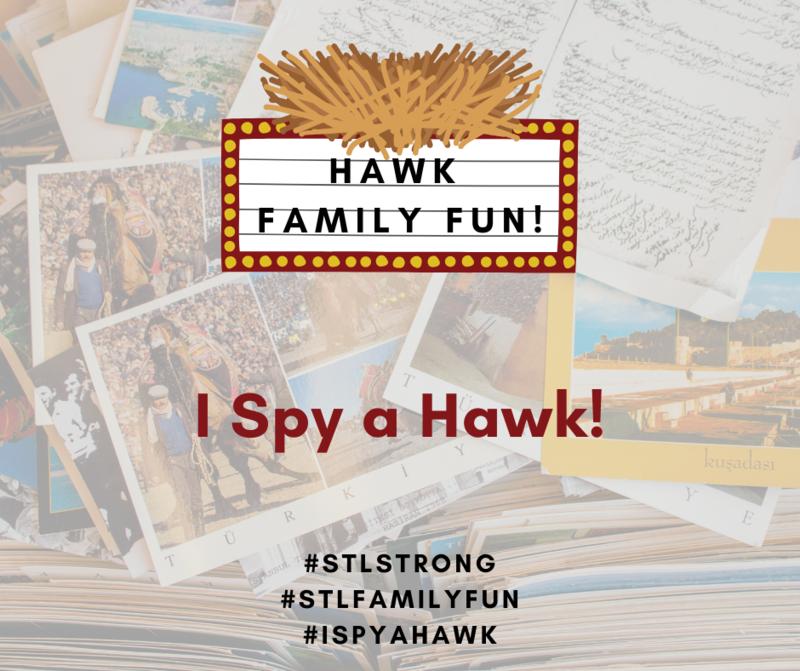 Hawk Family Fun - I Spy a Hawk (Covid Edition) Featured Photo