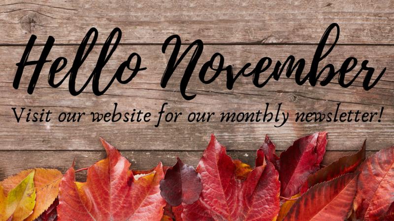 November Newsletter / Boletin de Noviembre Thumbnail Image