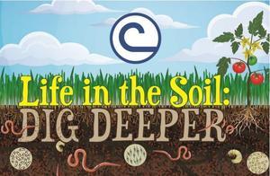 life in the soil dig deeper.JPG