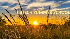 Picture of summer prairie.