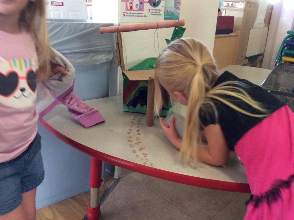 children and their leprechaun trap