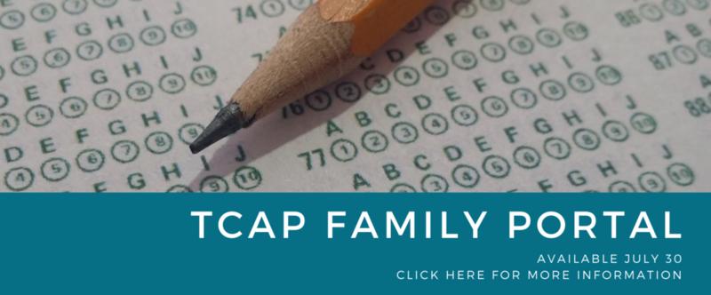 The Department of Education TCAP Family Portal Thumbnail Image